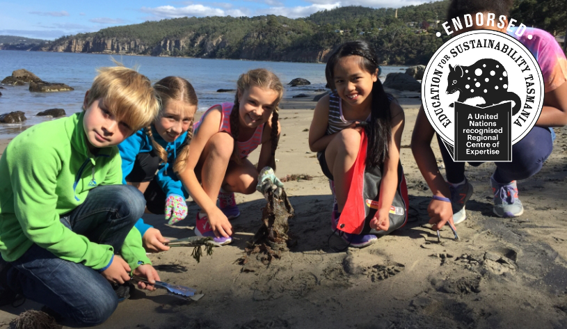 Students cleaning up Taroona beach